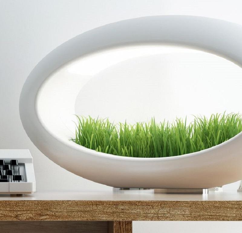 Grasslamp, una lámpara con jardín hidropónico incluido